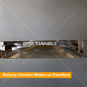 Tianrui Automatic Chicken Manure Removing System for Poultry Farm pictures & photos