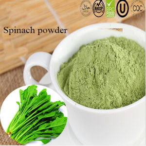 Natural Peasant No Pesticides Dehydration Spinach Powder pictures & photos