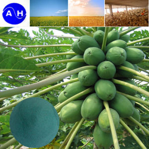 Cobre Organico Fertilizantes Amino Acid Chelate pictures & photos