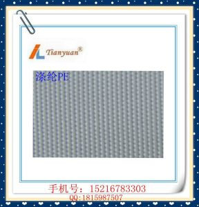 Acidproof Polyester Filter Cloth for Filter Press pictures & photos