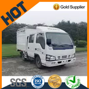 Qingling 600p 2490 Double Cab Light Truck pictures & photos