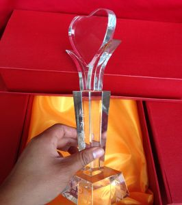 Promotion High Quality Clear Creative Crystal Trophy Awards for Achievement Award pictures & photos