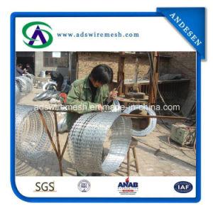 Galvanized Bto-22 Razor Barbed Wire pictures & photos