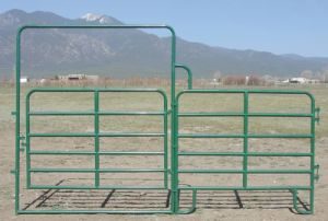 Powder Coating Green Color Farm Cattle Yard Panel pictures & photos