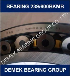 Big Size Spherical Roller Bearing 239/600 Bkmb in Stock pictures & photos