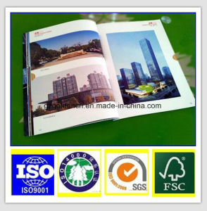 C2s Coated Paper 115g pictures & photos