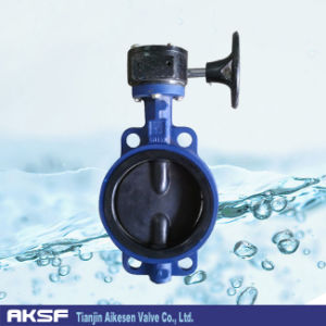 Lined Worm Gear Butterfly Valve