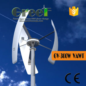 300W Small Vertical Windmill with Coreless Permanent magnet Generator pictures & photos