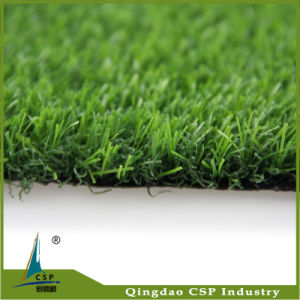 Garden Decoration Landscape Artificial Carpet Grass pictures & photos