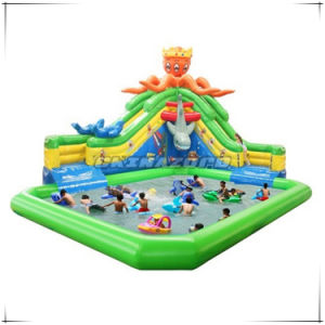 New Popular Land Water Games Inflatable Water Park Factory Price pictures & photos