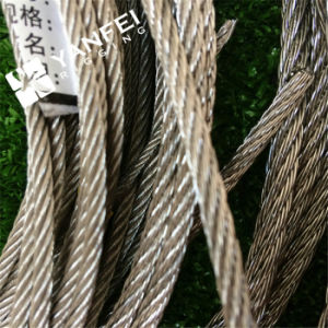 1*19 Stainless Steel AISI304/316 Steel Wire Rope for Crane pictures & photos