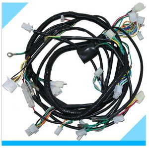 Custom Auto Electric Wire Harness Assembly Manufacturer pictures & photos