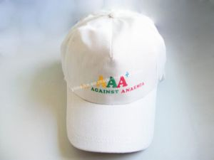 Advertising Logo Hat (LBC092109) pictures & photos
