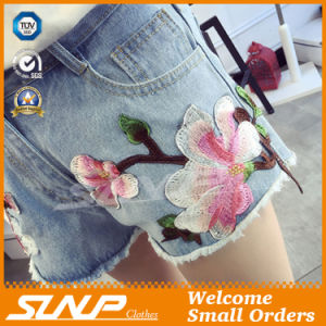 Women Embroidery Short Denim Jean Shorts Clothes