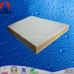 Hard WPC Co-Extrusion Board for Formwork pictures & photos
