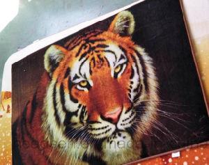 Hot Sale Printed Home Anti-Slip Door Mat pictures & photos