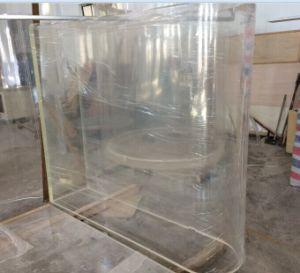 Large-Scale Transparent Acrylic Aquarium pictures & photos
