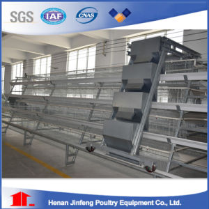 Professional New Design Hot High Quality Automatic Poultry Chicken Bird Cages for Layer Broiler Chicken pictures & photos