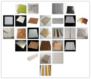 Hyde Transfer Printing Decorative PVC Board (RN-52) pictures & photos