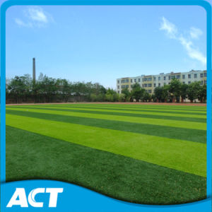 Artificial Fooball Grass for Soccer Turf MDS60 pictures & photos