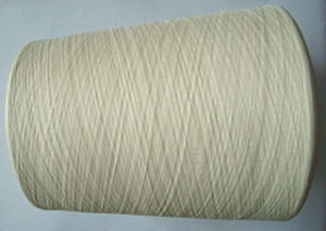 Silk Cotton Blenched Yarn Raw White pictures & photos