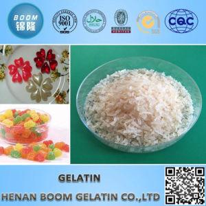 200 Bloom Bovine Bone Gelatin Granular for Frozen Meat pictures & photos