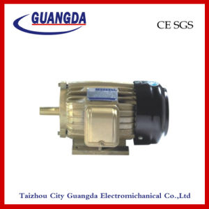 CE SGS 3kw Triple-Phase Air Compressor Motor pictures & photos