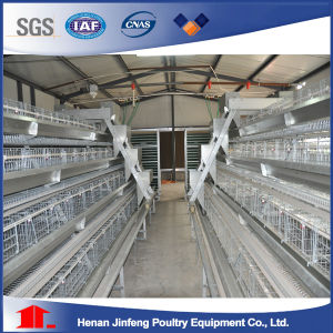 Layer Battery Cage with Manure Belt pictures & photos