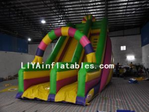 Inflatable Slide for Children (LY07165)