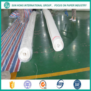 100% Polyester Press Felt for Paper Making Machinery pictures & photos