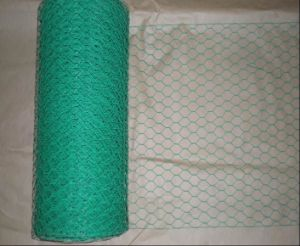 1/2inch 3/4inch, 1inch Vinyl Coated Poultry Mesh /Hexagonal Chicken Wire Mesh pictures & photos