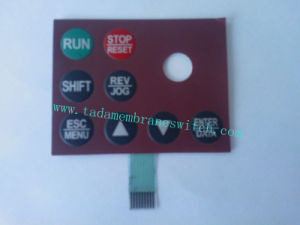 Membrane Switch with Metal Dome-142