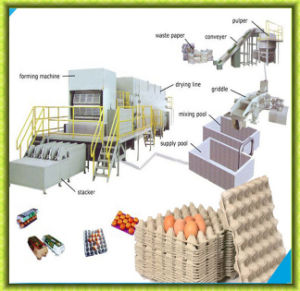 Full Automatic Paper Egg Carton Making Machine pictures & photos