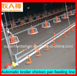 Poultry Breeding Equipment with Full Set Configuration pictures & photos