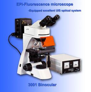 Binocular Fluoresence Microscope for Uis (AB-FM3001)