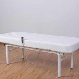 Beauty Bed Adjustable Bed Beauty Salon pictures & photos