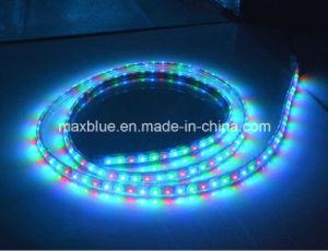 Ws2811 48LEDs/M DC12V Magic Addressable LED Strip Light pictures & photos