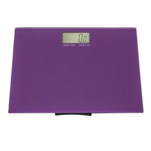 5body Scale