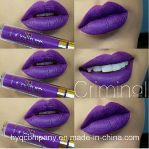Best Selling Las Plash 14 Colors Liquid Lisptick Matte Lipstick Matte Lipgloss Liquid Lipgloss pictures & photos