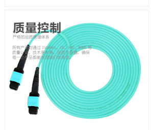 12 Core MPO/MTP Fiber Patch Cord pictures & photos