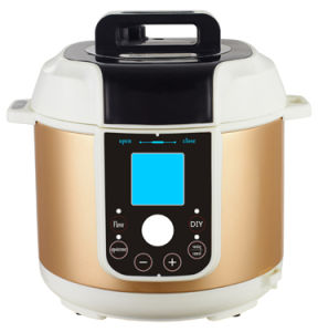 Stainless Steel Commercial Pressure Cooker Zh-A609