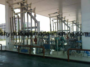 Customized Loading & Metering Skid for Finished Oil pictures & photos