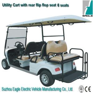 Electric Utility Cars (EG2048KSZ) pictures & photos