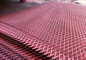 PVC Coated Expanded Metal Wire Mesh Panel Sheet pictures & photos
