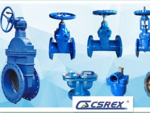 Resilient Seat Gate Valves with Rising Stem pictures & photos