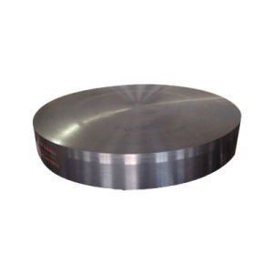 Heavy Forged Tube Sheet for Machine Plat pictures & photos