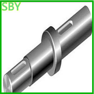 CNC Machining Shaft with Competitive Price (P066)