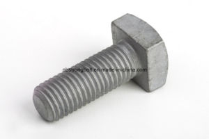 Square Head Bolt pictures & photos