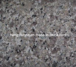Purple Galaxy Granite Slab