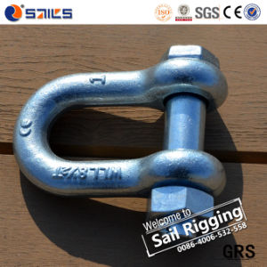 Us Type Hot Galvanised Dee Safety Shackle Sr-G2150-J pictures & photos